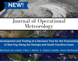 Development and Testing of a Decision Tree for the Forecasting of Sea Fog Along the Georgia and South Carolina Coast