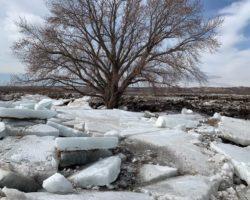 Flooding is taking a heavy toll in Nebraska