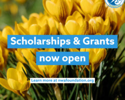 Scholarships & Grant Applications Now Open