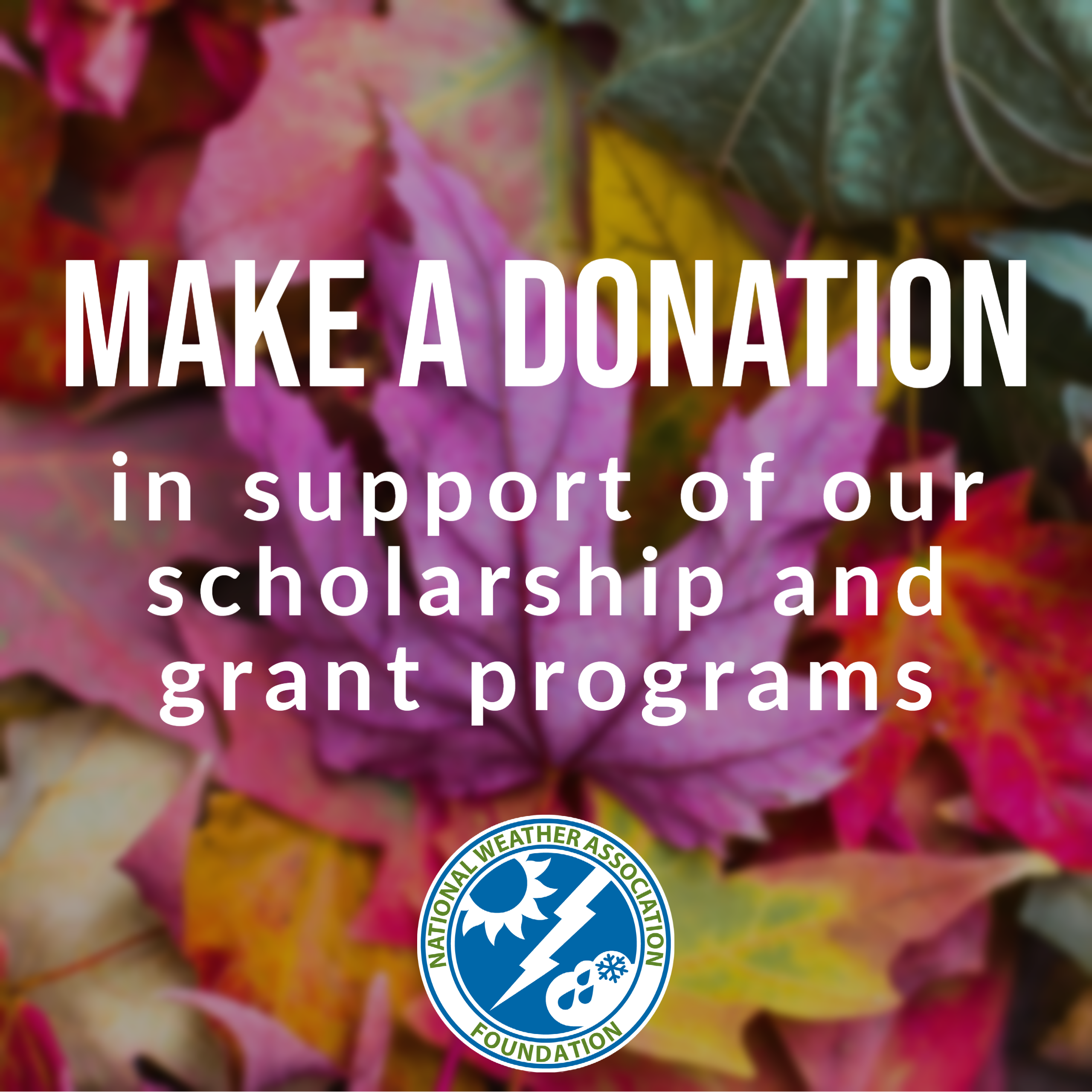 Make a Donation in support of our scholarship and grant programs through the National Weather Association Foundation